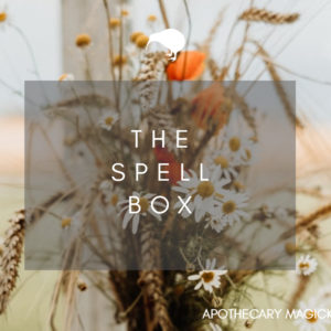 the spell box january 2021