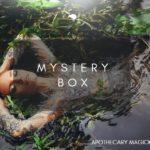 apothecary magicka mystery box 7