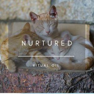 apothecary magicka nurtured ritual oil